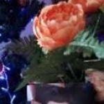 Rosa Coelho Profile Picture