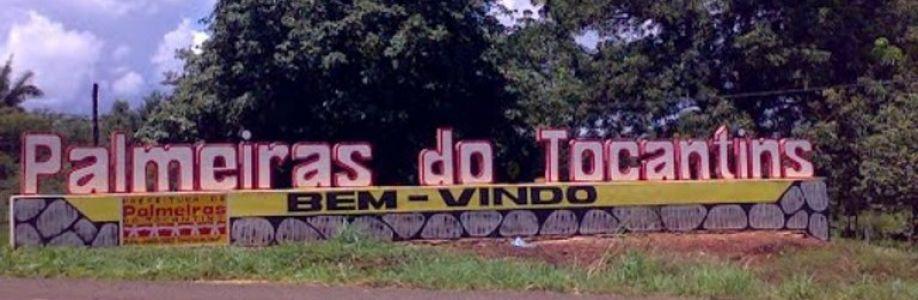 Patriota - Palmeiras do Tocantin Cover Image