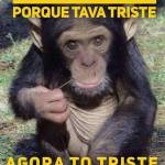 ana arantes Profile Picture
